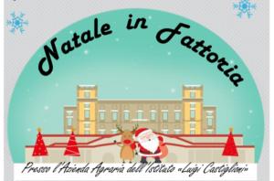 Natale in fattoria 2019 – 15 dicembre