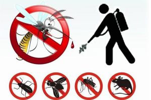 Decoro Urbano: interventi di prevenzione e disinfestazione